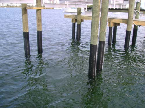 All around docks piling wrap seawall protection for Dock pilings cost